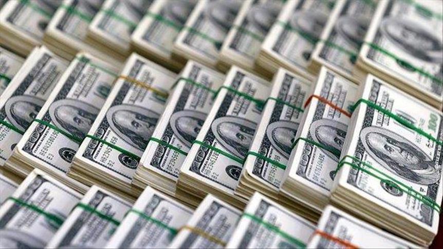احتياطات مصر الأجنبية تفقد 1.96 مليار دولار في ديسمبر